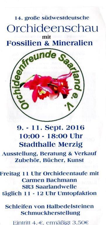 OrchSchau Merzig 1151